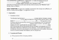 Awesome Single Member Llc Operating Agreement Template