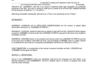 Best Product License Agreement Template