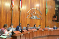 Stunning Company Town Hall Meeting Agenda